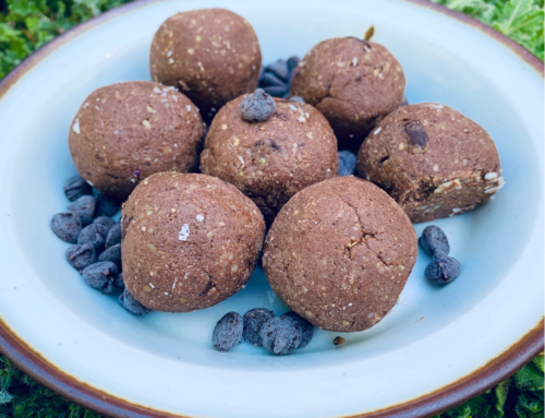 Chocolate Keto Fat Bombs (travel-safe, Paleo, vegan, GAPS option)